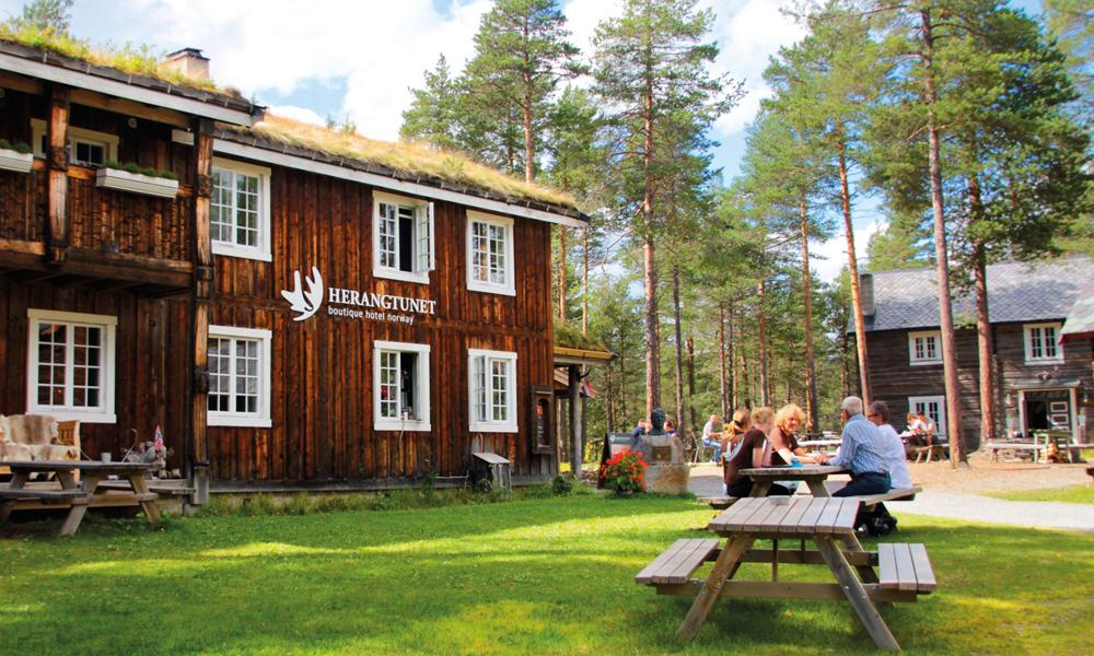 En herlig morgen i deilige omgivelser på tunet. Foto: Kjersti Vangerud