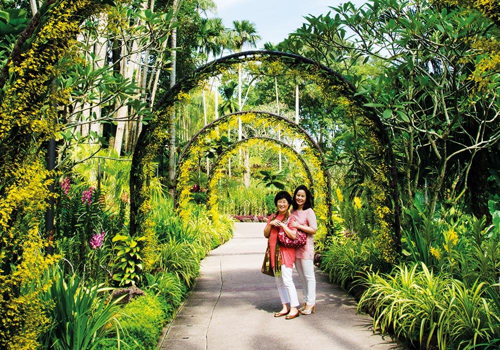 I botanisk hage kan du vandre blant tusentalls orkidearter eller slappe av under et tre og nyte den grønne oasen midt i millionbyen. Foto: Mari Bareksten