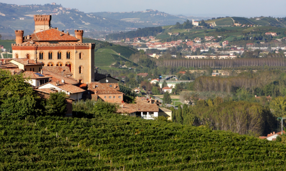 Kjøpe vingård i italia
