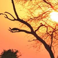 Malawi_forside