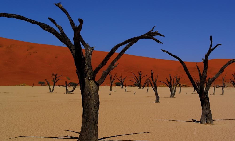 Den spesielle ørkenen er en drøm for alle som liker å reise med kamera rundt halsen. Foto: Hans Thomas Holm