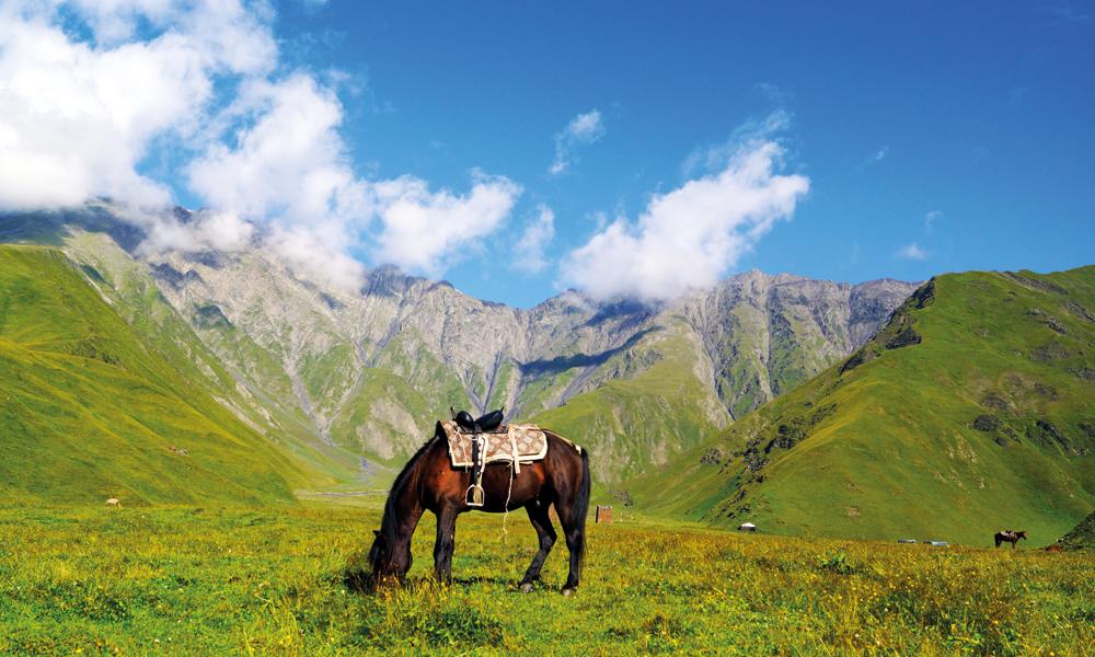 Finnes det en vakrere plass å beite på enn omringet av de vakre Tusheti-fjellene? Foto: Jorunn Elise Østbø