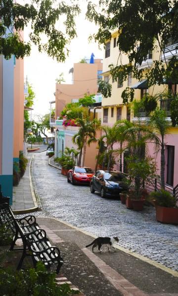 Gamlebyen i hovedstaden San Juan er definitivt et stopp man ikke må gå glipp av. De over 400 fargerike, nå litt falmede, kolonobygningene skaper en vakker ramme rundt brosteinsbelagte gater og vakre butikker. Foto: Torild Moland