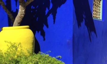 Hagen som Yves Sain-Laurent reddet og videreutviklet. Det sies at han hentet mye inspirasjon fra denne hagen. Foto: Pia Walker