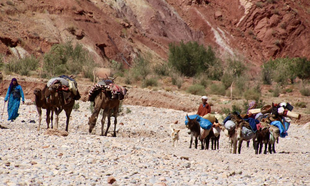 Vinteren nærmer seg og nomadene trekker ned til lavereliggende strøk. Foto: Hans-Christian Bøhler
