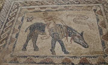 Mosaikkgulvene fra tiden mellom 300 år f.k. til 700 år e.k. er imponerende godt bevart. Foto: Hans-Christian Bøhler