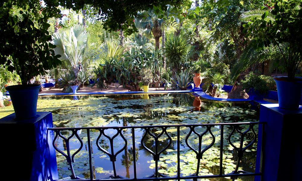 Majorette Gardens som YSL kjøpte og reddet. Her finnes kaktuser og palmer fra hele verden, fra 20 centimeter til 20 meter høye. Innimellom, de vakreste springvann. Foto: Hans-Christian Bøhler