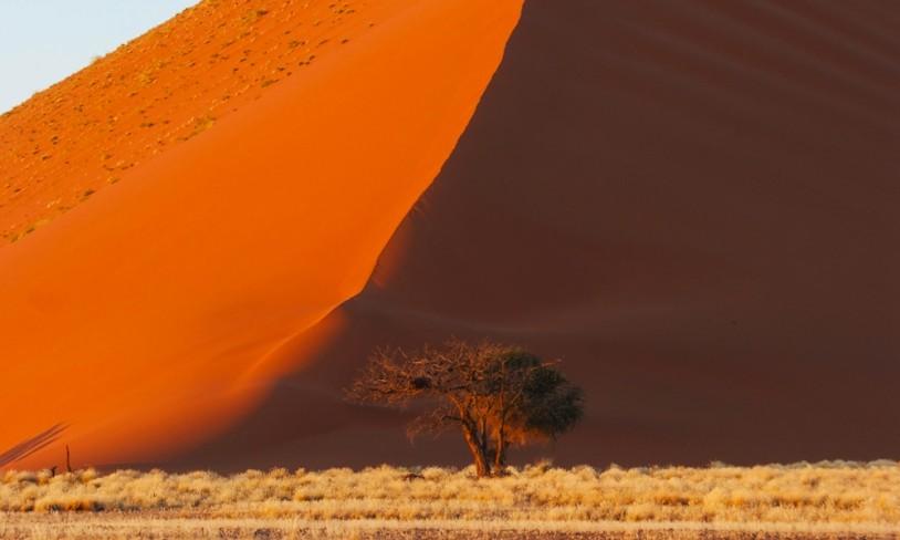 27. Roadtrip i ørkenen - Namibia
