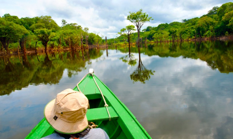 23. Grønn glede i Amazonas - Brasil og Peru