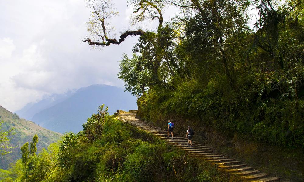 På veien opp til den sjarmerende landsbyen Ghandruk med spennende historie og imponerende utsikt mot Annapurna. Hele turen kan du lese om i magasinet. Foto: Mari Bareksten
