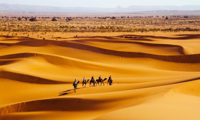 14. Stille ørkenliv - Sahara, Marokko