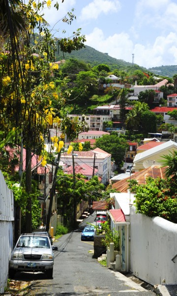 Ikke alle verdens hovedsteder er like innbydende som Charlotte Amalie, sm er finest litt vekk fra sentrum der cruiseturistene tråkker. Foto: Torild Moland