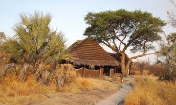 Camp Kalahari er et av tre overnattingsalternativ i Makgadikgadi, og har fast morgenbesøk av surikatene. Foto: Torild Moland
