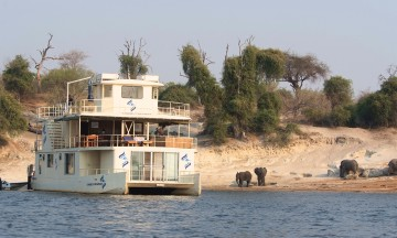 Husbåt er absolutt beste måten å oppleve dyrelivet langs Chobe-elven. Foto: Ronny Frimann
