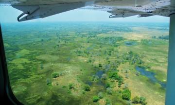 Flyplassen i Maun er en av verdens travleste, for småfly er eneste alternativ for å nå mange av de avsidesliggende lodgene i Botswana. Foto: Ronny Frimann