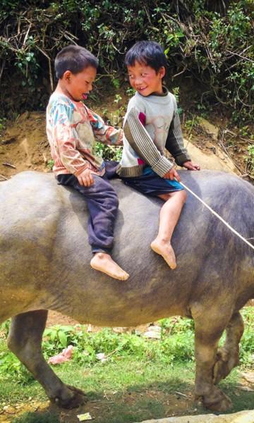 Guttene på vannbøffelen er for små til å jobbe i risterrassene – men ri på vannbøffel, det kan de. Foto: Preben Danielsen
