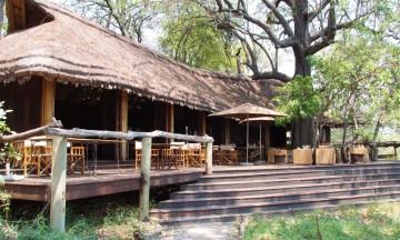 Okavango regnes som safariens Rolls Royce både på grunn av det rike dyrelivet, og det høye prisnivået. En opplevelse for livet. Foto: Ronny Frimann
