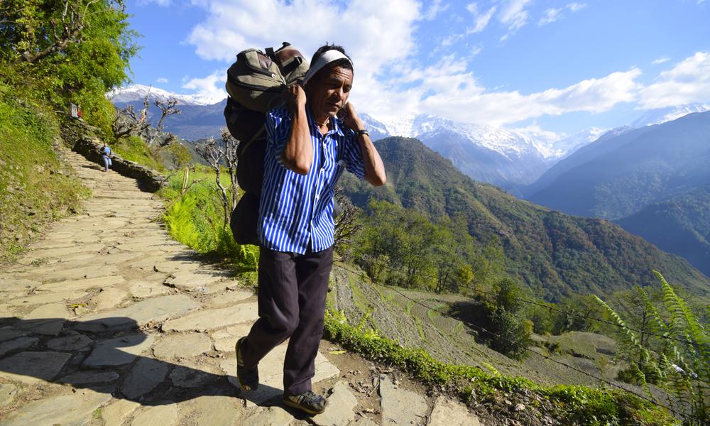 Bæreren Buddi Bahadu Bhattas nakkestyrke og bæreteknikk er imponerende. Foto: Mari Bareksten