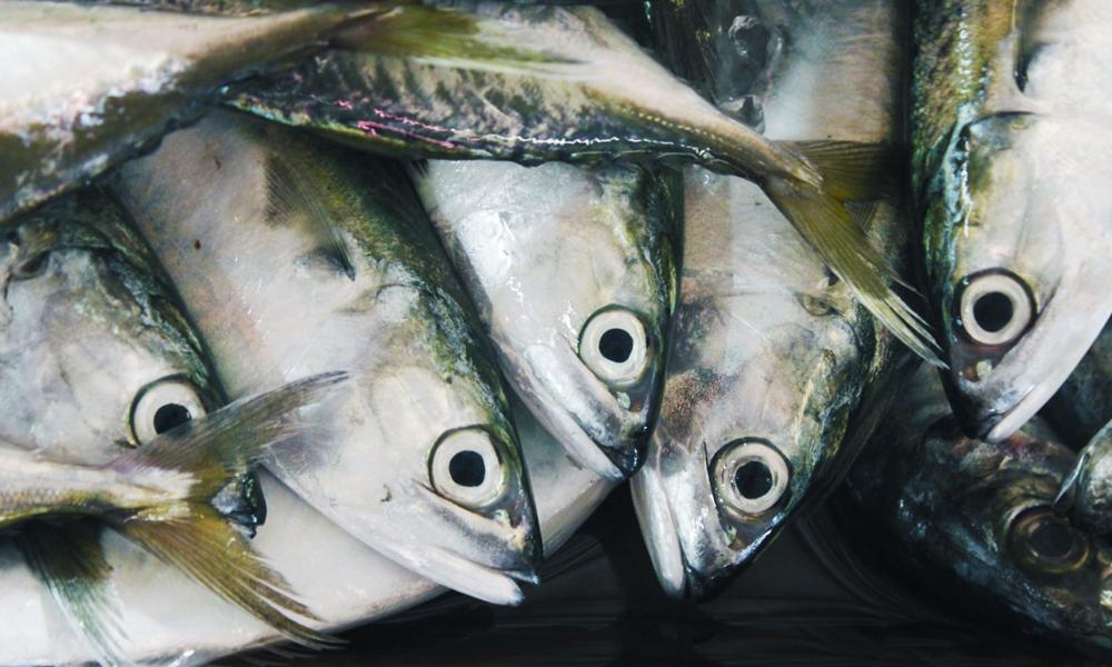 All den gode maten som venter oss om kvelden er en stor motivasjon for å tråkke seg i mål. Fersk fisk og andre thailandske delikatesser. Foto: iStock