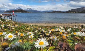 Terra del Fuego, Ildlandet lengst sør i Sør-Amerika. Foto: Ann Kristin Balto / Testpanelet