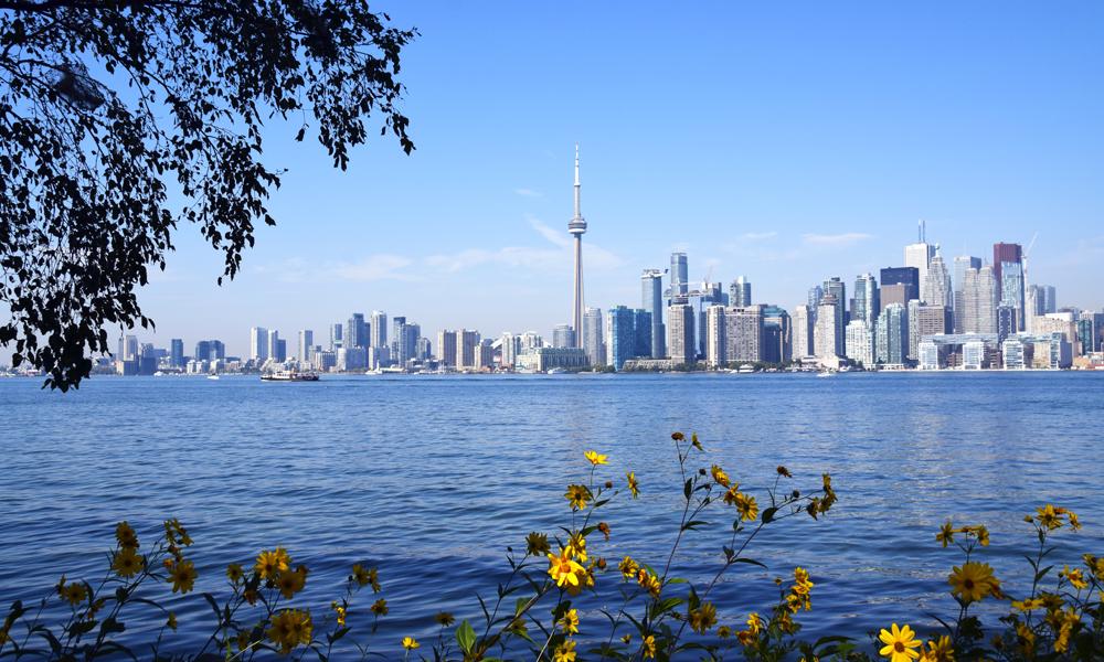 Den beste utsikten til Torontos imponerende skyline er fra Toronto Island –en liten øygruppe som ligger en kort fergetur unna sentrum. Foto: Mari Bareksten