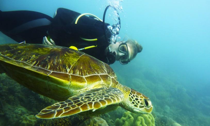 4. Whitsunday Islands og Great Barrier Reef