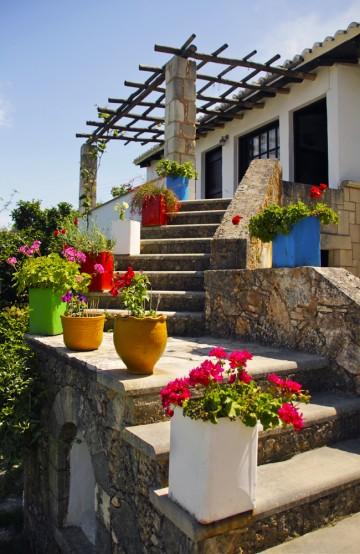 Vakre farger og blomster – kjennetegn på våren på Kreta. Foto: Kjersti Vangerud