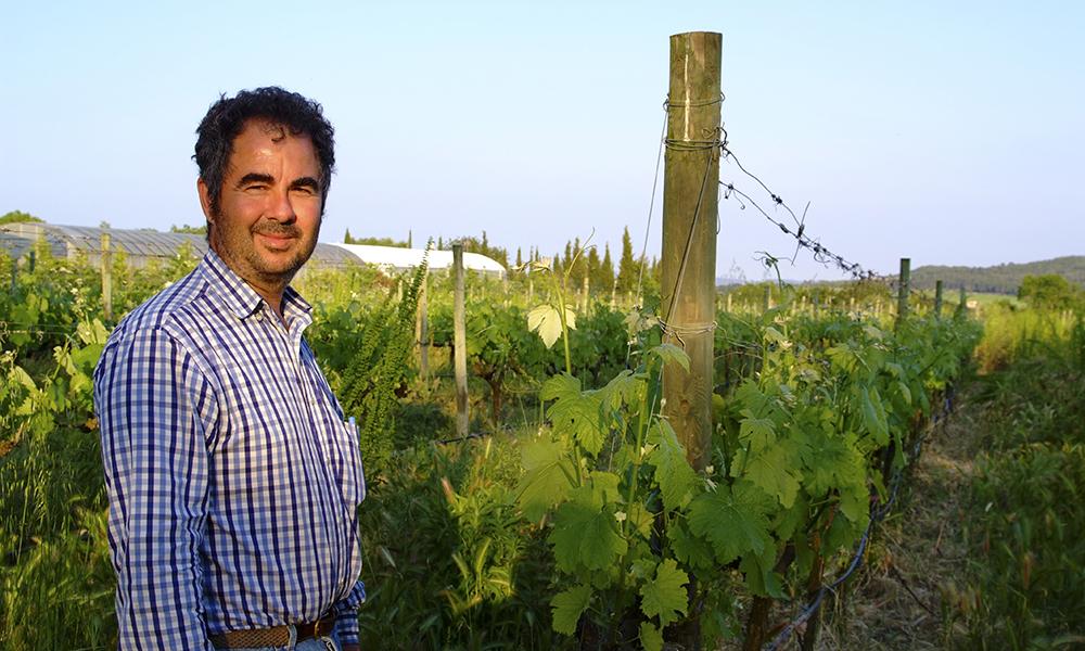 Carlos Feliu eier fincaen ved samme navn, Can Feliu, hvor han dyrker økologiske grønnsaker og vin som gjestene kan være med og produsere. Foto: Ronny Frimann