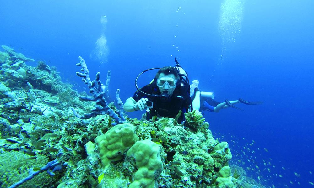 Dykking er også inkludert! Foto: Ronny Frimann