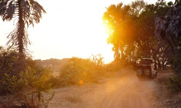 Katavi er Tanzanias tredje største nasjonalpark, og den mest avsidesliggende. Det borger for store opplevelser i ekte villmark. Foto: Ronny Frimann