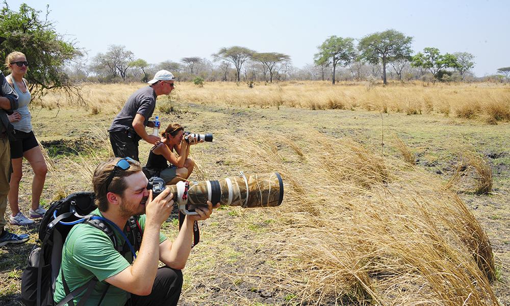 I Katavi er det bare rundt 1000 turister i året, like mange som i Serengeti på én eneste dag. Og parken byr på mange flotte fotoøyeblikk. Foto: Ronny Frimann