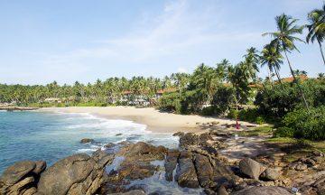 Et belte av nydelige sandstrender slynger seg rundt hele øya. Sri Lanka er et eldorado for strandløver, og stadig flere finner veien helt til sør, som her ved Tangalle. Foto: Runar Larsen