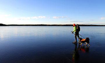 Turskøyting er en morsom vinteraktivitet – både for to- og firbente. Og det er på høy tid at sporten oppdages her hjemme også. Foto: Ida Anett Danielsen