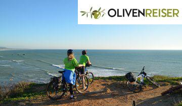 Annonse olivenreiser