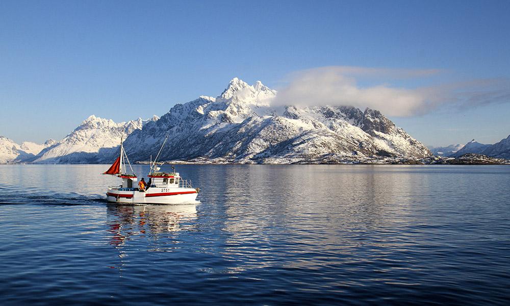 LOFOTEN: Det tradisjonsrike Lofotfisket har tradisjoner 1000 år tilbake i tid, og vinterens høydepunkt både for fiskere og gastronomer. Foto: Runar Larsen