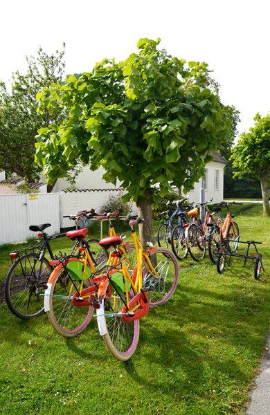 Småbyidyll: Skanør er en herlig liten by, perfekt å utforske med sykkel. Foto: Marte Veimo