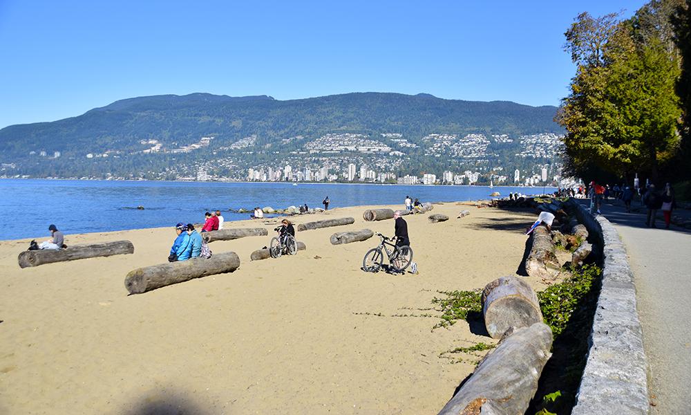Trestokkene på Third Beach er perfekte for en pust i bakken på sykkeltur. Foto: Mari Bareksten