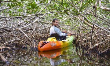 DSC_0449kajakk mangrove Big Pine Key_foto mari bareksten