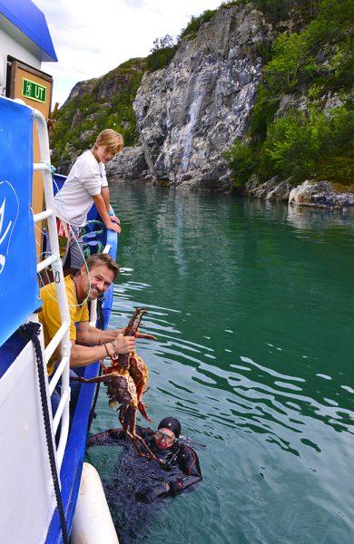 Kapteinen fungerer også som skipper, kokk, servitør –og som her – som dykker. Foto: Torild Moland