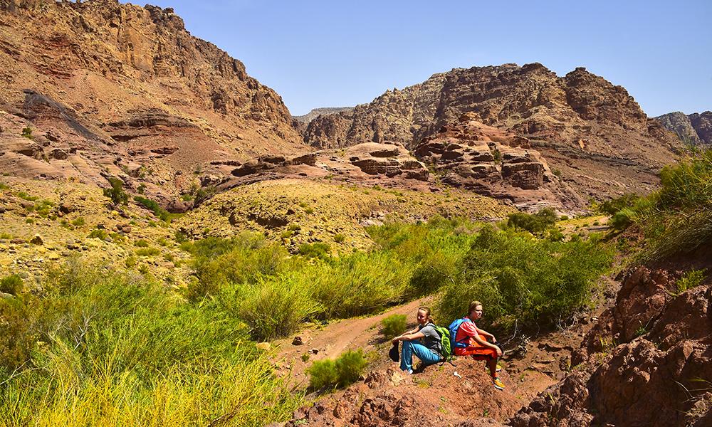 Turen i Dana nasjonalpark går gjennom hele fire klimasoner på én dag, fra grønn og frodig middelhavsnatur til karrig og øde ørkenlandskap. Foto: Torild Moland