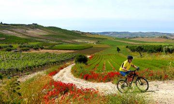 Å sykle på Sicilia er en reise gjennom vakker natur, øde landeveier, koselige landsbyer og fristende badebukter. Foto: Sissel Bakken