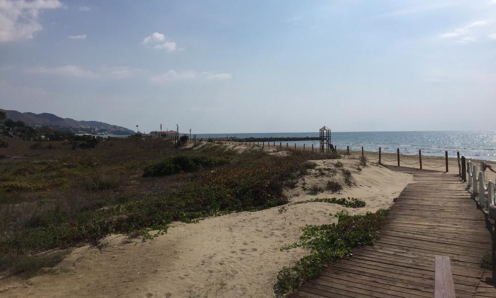 Utsikt fra lunsjen på stranda. Foto: Anette Moe