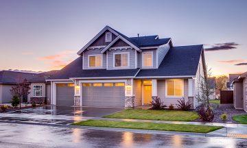 La boligen ha det bra hjemme, mens du er på ferie. Ds blir det mye hyggeligere å komme hjem igjen. Foto: Pexels