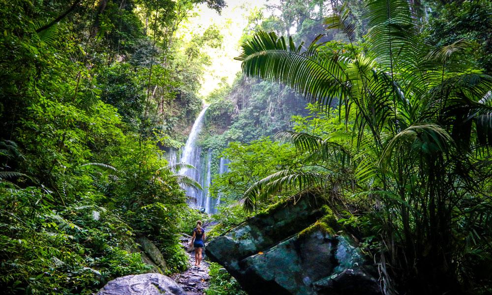 Den frodige og rolige øya, Lombok, ligger i skyggen av Bali, men har fantastiske naturopplevelser. Foto: Preben Danielsen