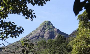 Fotturen opp Sri Lankas hellige fjell Adam´s Peak – også kjent som Sri Poda – er både flott og mektig. Foto: Runar Larsen