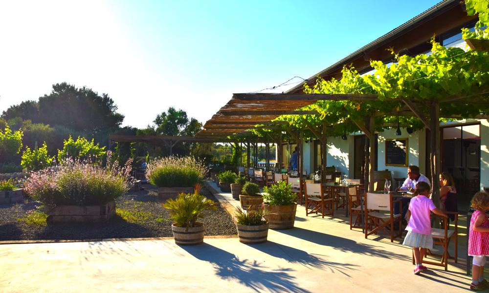 Vingården har egen restaurant. For Binifadet er mer enn en vingård, det er et samlingssted. Foto: Mari Bareksten