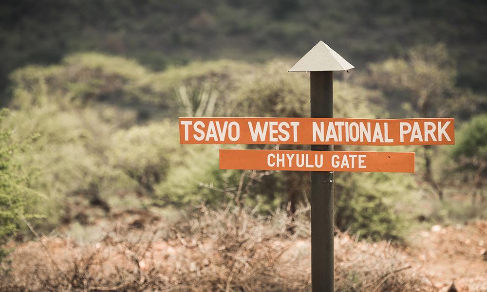 Tsavo West er nesten den rake motsetningen til flate og tørre Amboseli. Her var det grønt, frodig. Foto: Stian Klo