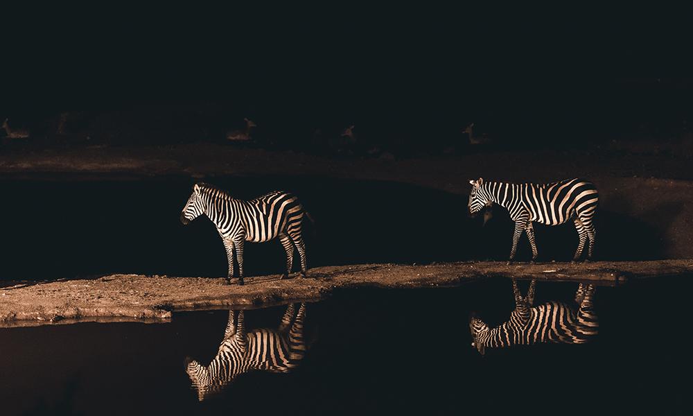 Utsikten fra Kilaguni Serena Safari Lodge. Foto: Stian Klo