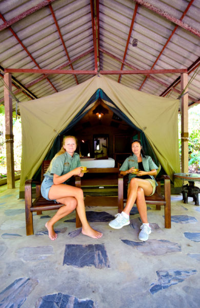 Flott telt, basseng og bar. Her får man virkelig jungelkcamping på sitt beste. Foto: Mari Bareksten