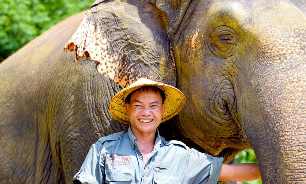 På Elephant Hills blir elefantene tatt godt vare på av både ansatte og besøkende. Foto: Mari Bareksten
